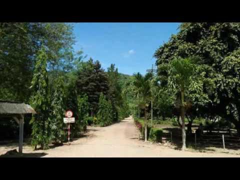 Pesona Wisata Bandealit Andongrejo Tempurejo Jember Jawa Timur