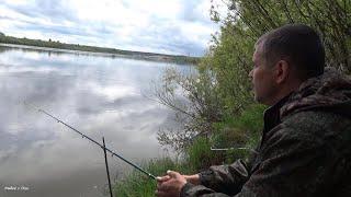 Консервированные насадки для рыбы какие ЛУЧШЕ Места ловли сома