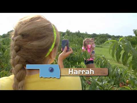Discover Oklahoma - Wind Drift Orchards