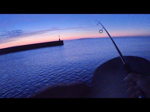 夕暮れの堤防でダイソージグ投げたら凄かった~釣り車中泊1日目~