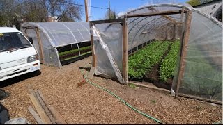 Cheap, Lean, and DIY Greenhouses