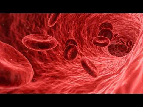 Как увеличить количество тромбоцитов в крови при их низком уровне народными средствами