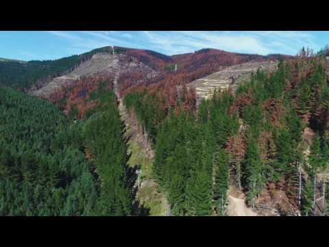 Drone footage captures damage to Christchurch Adventure Park.