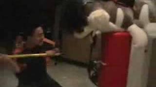Ninja Rayray - Wolf Battle