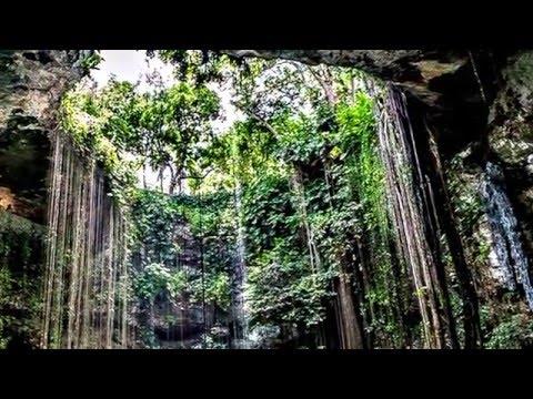 Unusual Sea Sights - Cenote Angelita Underwater River