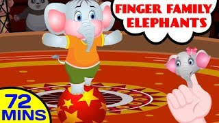Elephants Finger Family