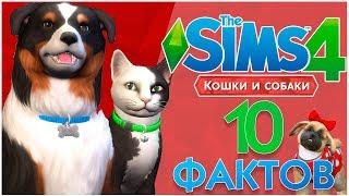 THE SIMS 4 КОШКИ И СОБАКИ - 10 ФАКТОВ!