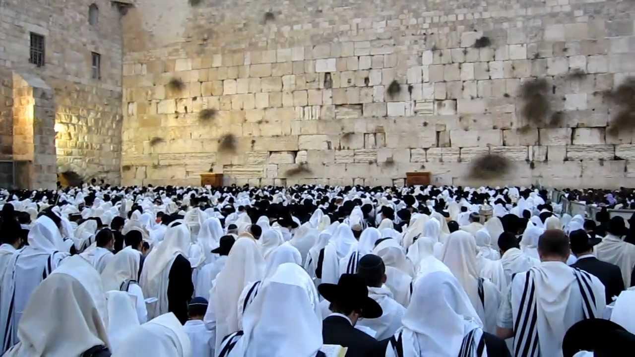 תוצאת תמונה עבור תמונות של תפילה בכותל