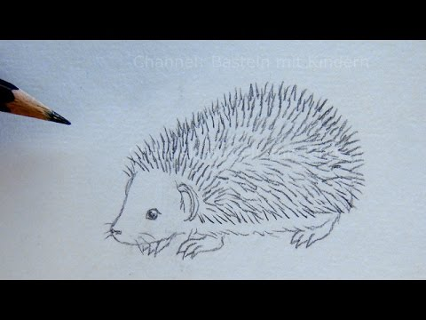 How To Draw A Hedgehog With Pencil