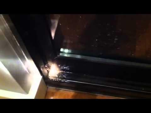 Leak Under Sliding Door Youtube