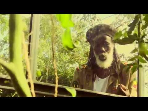 Ashanti Roy & Pura Vida | Nature is life (Official video)