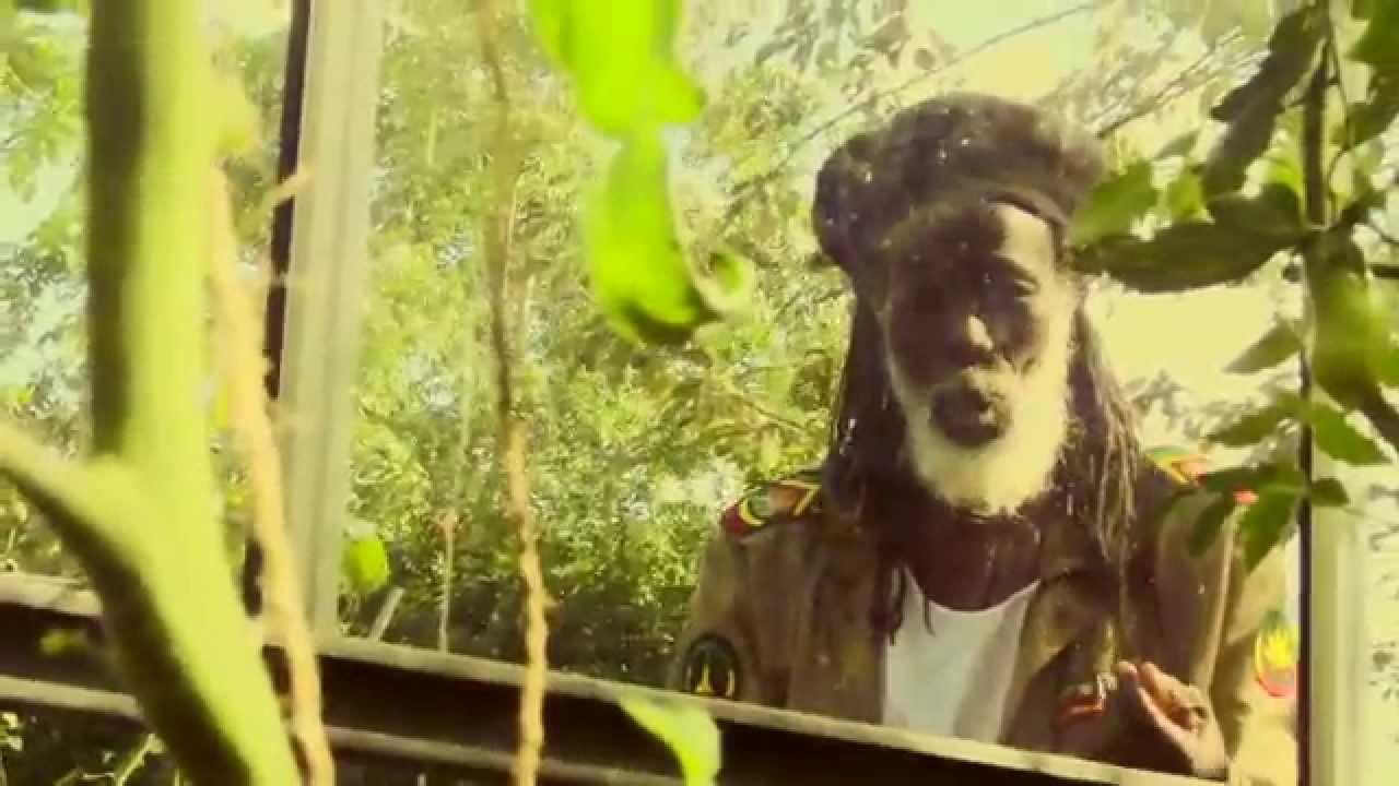 Congo Ashanti Roy / Shaggy Tojo - Ark / Arklodica
