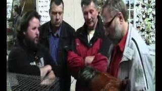 1-я Выставка Птицы и кроликов.Беларусь.