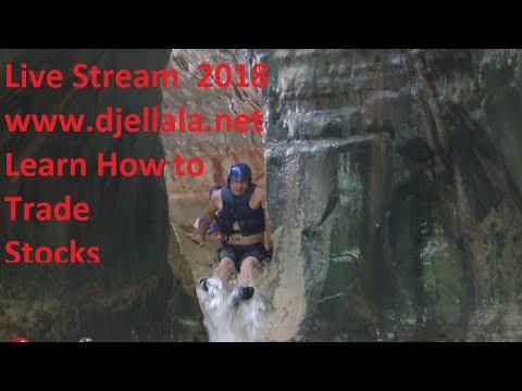 Swing Training Strategies Live Stream N 45