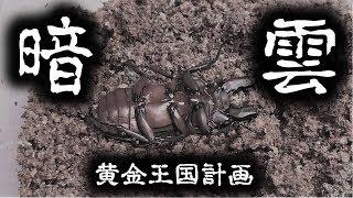 クワガタ&カブトムシ&昆虫採集 暗雲 大失敗だったババオウゴンオニク...