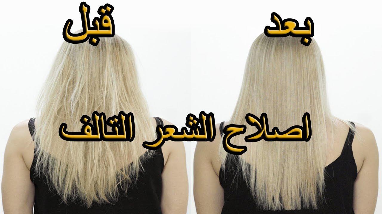 ماسك طبيعي لعلاج الشعر التالف و الجاف