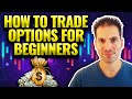How to Trade Options: Beginner's Introduction to Trading Stock Options Strategies (Tutorial)
