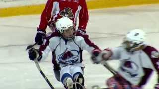 An inside look at the world of sled hockey