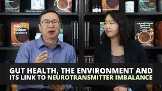 Gut Health, The Environment And Its Link To Neurotransmitter Imbalance
