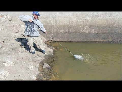 Catching Lot Of Fish Using Cast Net. EP 82