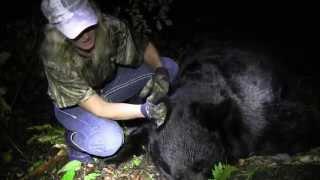 BoneDriven TV Episode 6 - Bear Down