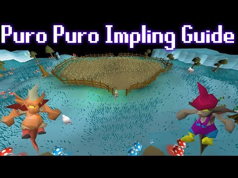 2018/2019 Complete Puro Puro Impling Hunting Guide