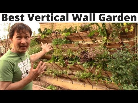 Best Vertical Wall Garden You Can Assemble without Tools