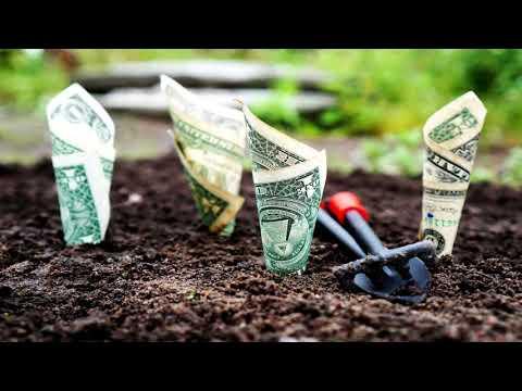Wealth Creation Ebooks Sales Video