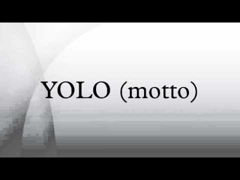 yolo the motto that has gone Some people have graffitied yolo on walls it has become a popular twitter hashtag some youth have said that it is their motto, and actor zac efron got a tattoo with the acronym some youth, however, have taken action against the yolo mindset hip hop artist joey bada$$ released a song entitled death of yolo on his album summer knights.