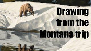 LIVE STREAM - Drawing Montana Wildlife! thumbnail