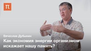 Груминг и экономия — Вячеслав Дубынин