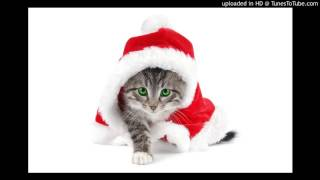 CAT SANTA CLAUS SONG ( FREE MUSIC DOWNLOAD )