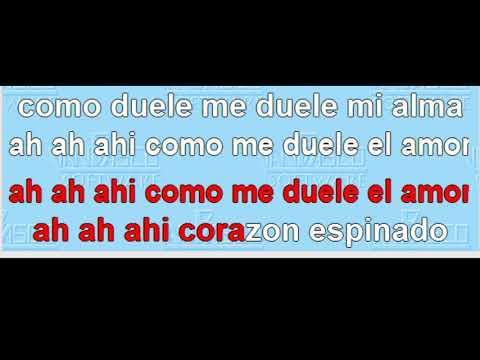 Santana - Corazon Espinado Karaoke