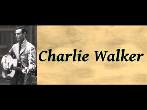 Pick Me Up on Your Way Down - Charlie Walker
