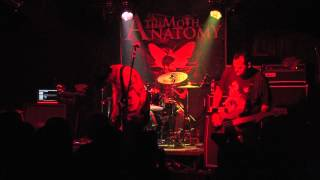 "The Moth Anatomy ~ ""Waves Of Indifference"" ~ on ROCK HARD LIVE"