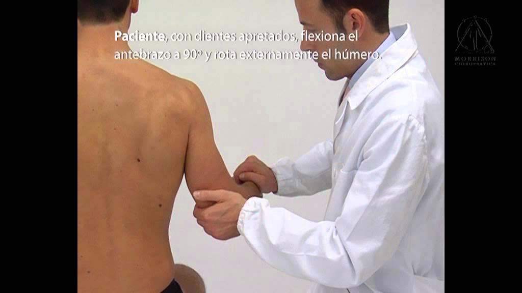 Kinesiologia Aplicada - Prueba Muscular Manual: Redondo menor - YouTube