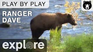 Ranger Dave - Katmai National Park - Brown Bear Play By Play thumbnail