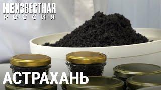 Чёрное золото России | НЕИЗВЕСТНАЯ РОССИЯ