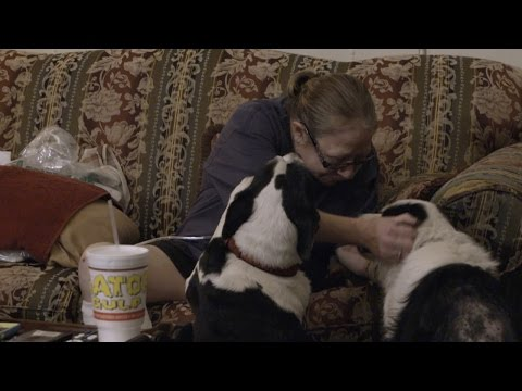 A Flood Couldn't Keep Suzanne and Her Dogs Apart thumbnail