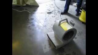 видео Аренда и прокат моющего пылесоса, моющий пылесос напрокат в Минске