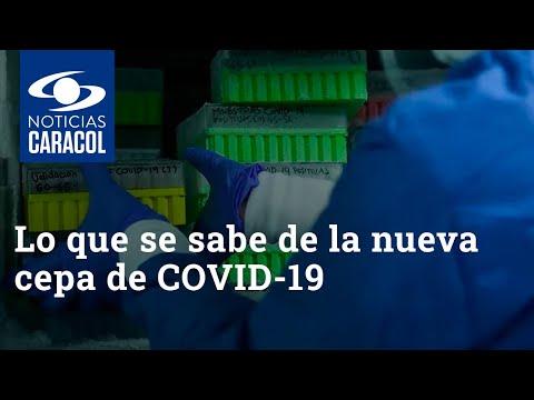 Lo que se sabe de la nueva cepa de COVID-19 que Colombia reportó en bases mundiales