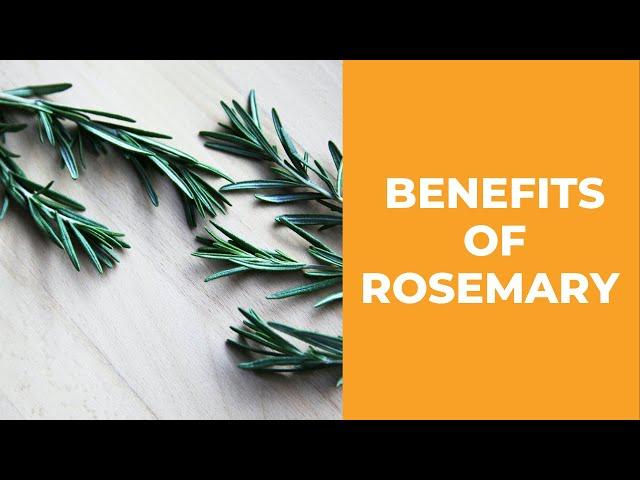 Rosemary Baths Recipe and Rosemary Healing Benefits  ( 2020 )