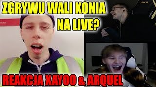 ZGRYWU WALI KONIA NA LIVE? - REAKCJA XAYOO & ARQUEL