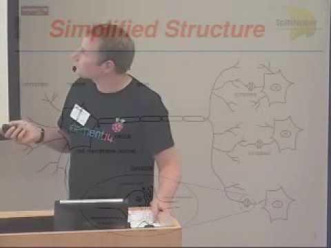 SpiNNaker-A million core ARM-powered Neural HPC