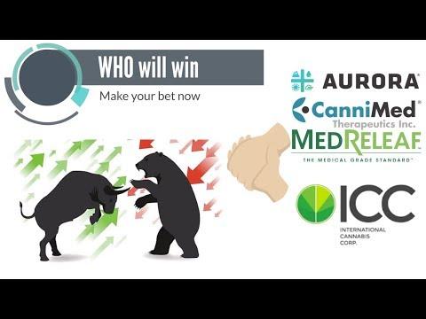 Bear vs Bull who will win today. Aurora will acquire ICC.
