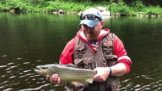 Fishing / Camping trip on the Farmington River