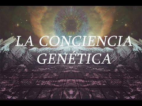 DDLA 13 - La conciencia genética