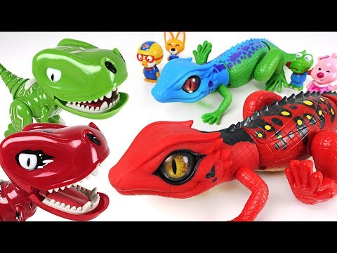 Pororo! Lets defeat dinosaurs and find treasure with Robo Alive Lizard brothers! - DuDuPopTOY