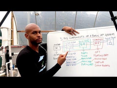 AQUAPONICS: THE 5 REQUIRED COMPONENTS OF A BASIC AQUAPONICS SYSTEM