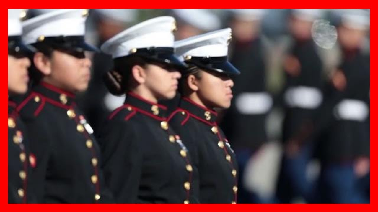 Marine Corps Dress Blue Uniform Female Youtube